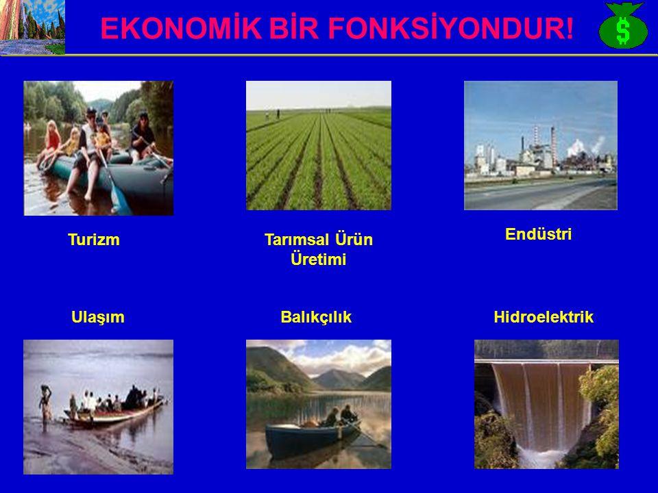 EKONOMİK BİR FONKSİYONDUR! TurizmTarımsal Ürün Üretimi Endüstri UlaşımBalıkçılıkHidroelektrik
