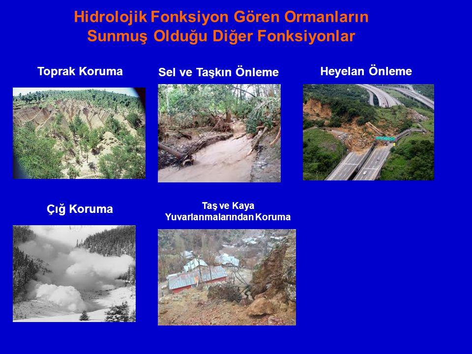 Hidrolojik Fonksiyon Gören Ormanların Sunmuş Olduğu Diğer Fonksiyonlar Sel ve Taşkın Önleme Heyelan Önleme Çığ Koruma Taş ve Kaya Yuvarlanmalarından K