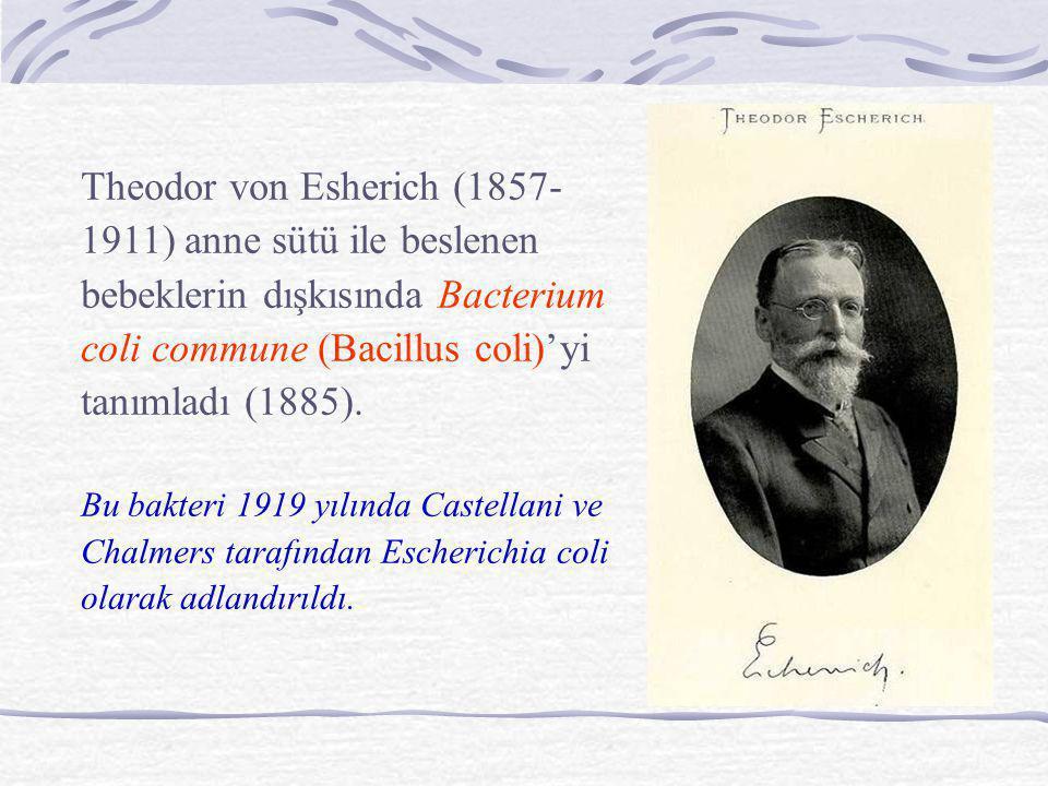 Theodor von Esherich (1857- 1911) anne sütü ile beslenen bebeklerin dışkısında Bacterium coli commune (Bacillus coli)'yi tanımladı (1885). Bu bakteri