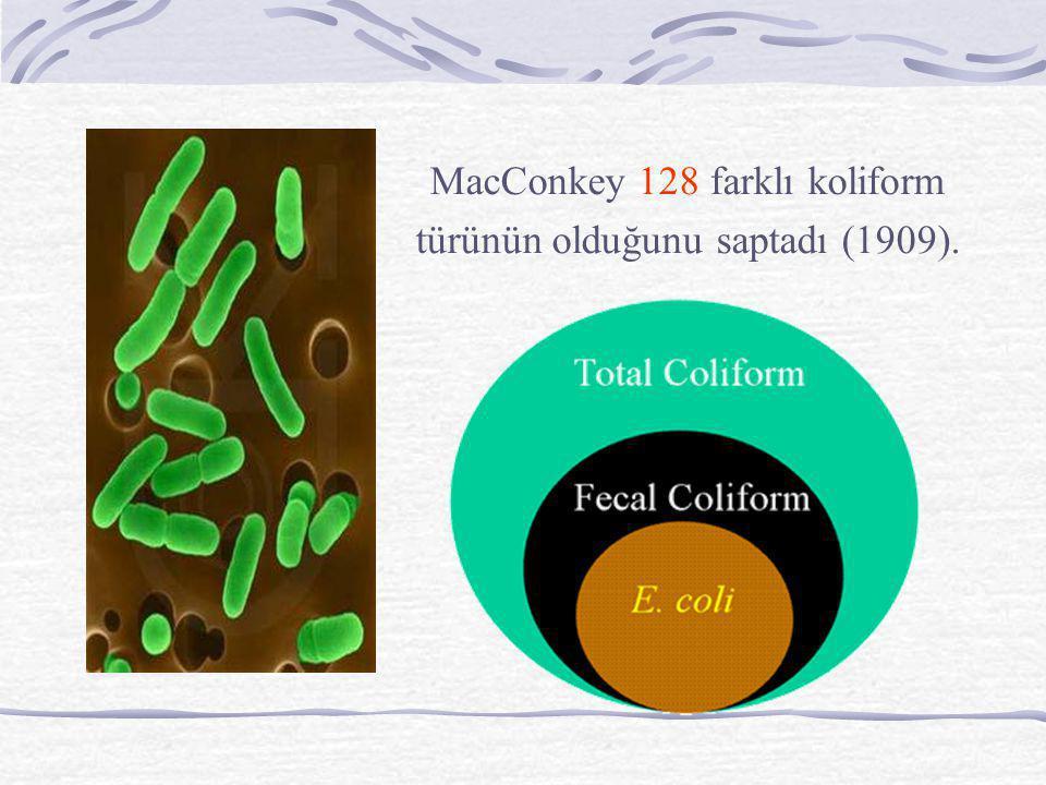 MacConkey 128 farklı koliform türünün olduğunu saptadı (1909).