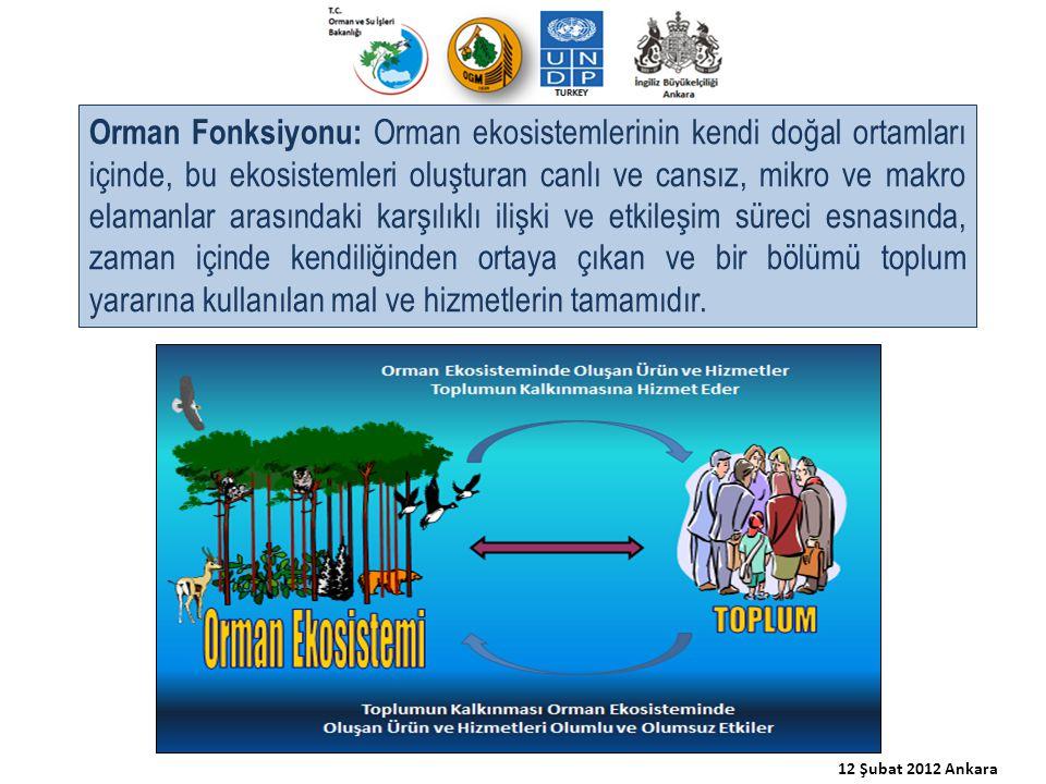 Orman Fonksiyonu: Orman ekosistemlerinin kendi doğal ortamları içinde, bu ekosistemleri oluşturan canlı ve cansız, mikro ve makro elamanlar arasındaki