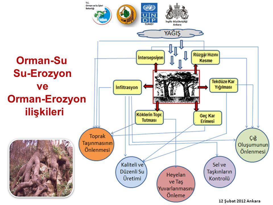 Orman-Su Su-Erozyon ve Orman-Erozyon ilişkileri