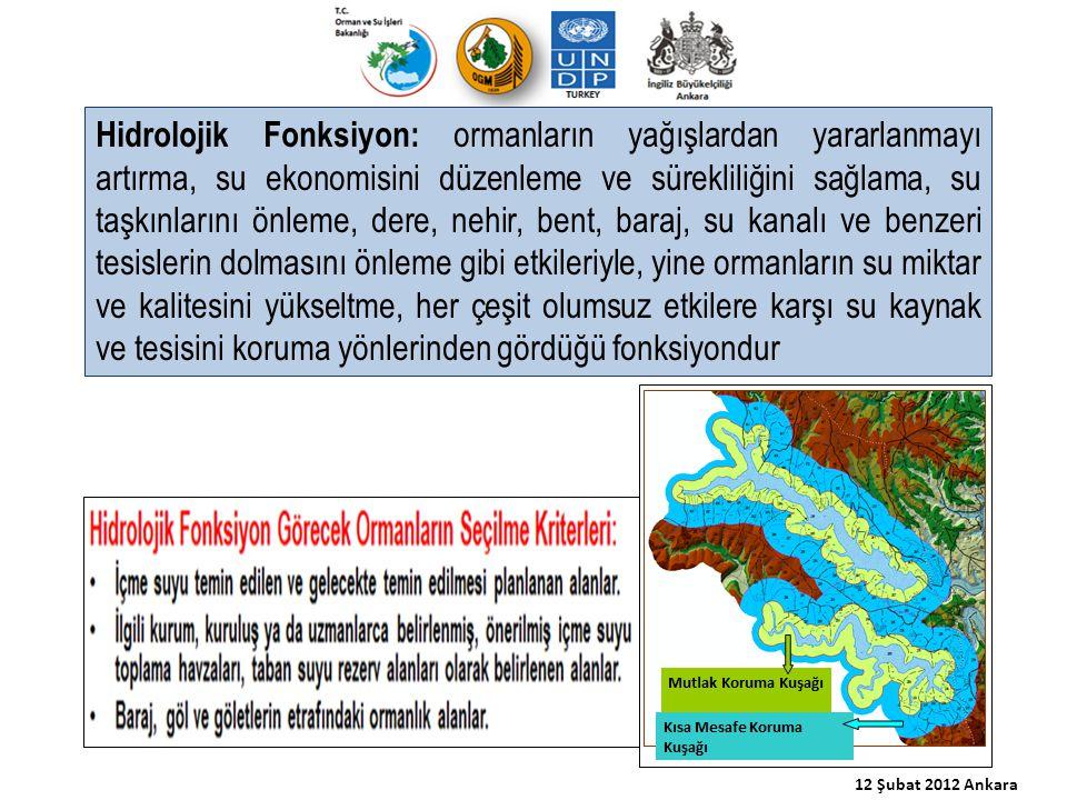 Hidrolojik Fonksiyon: ormanların yağışlardan yararlanmayı artırma, su ekonomisini düzenleme ve sürekliliğini sağlama, su taşkınlarını önleme, dere, ne