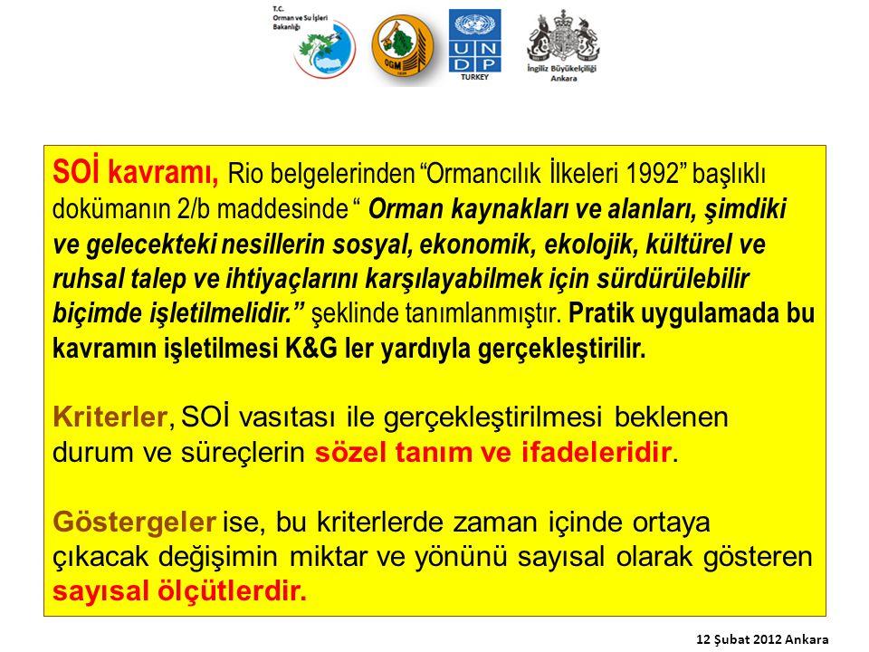 Ülkemizin içinde yer aldığı Pan-Avrupa Süreci SOİ için altı kriter belirlemiştir.