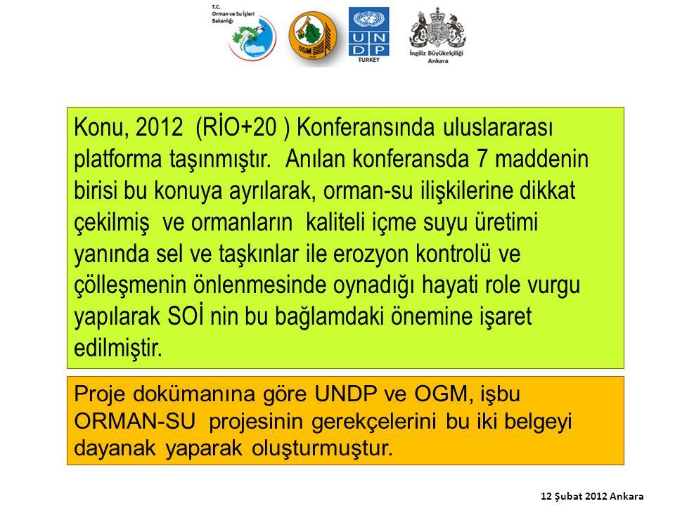 Konu, 2012 (RİO+20 ) Konferansında uluslararası platforma taşınmıştır. Anılan konferansda 7 maddenin birisi bu konuya ayrılarak, orman-su ilişkilerine