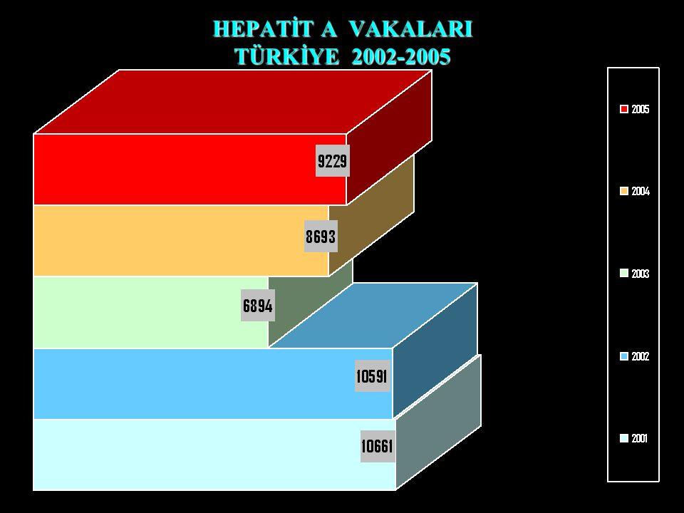 HEPATİT A VAKALARI TÜRKİYE 2002-2005