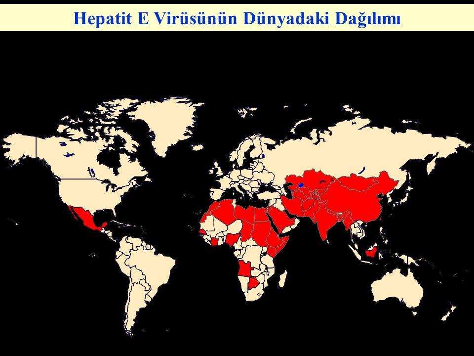 Hepatit E Virüsünün Dünyadaki Dağılımı