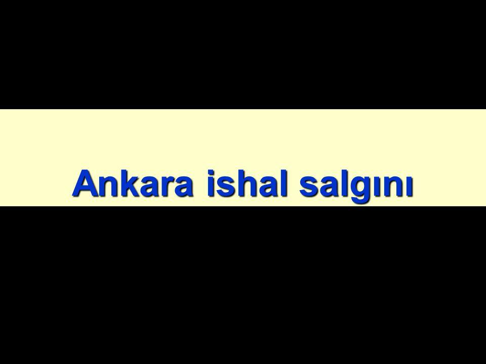Ankara ishal salgını