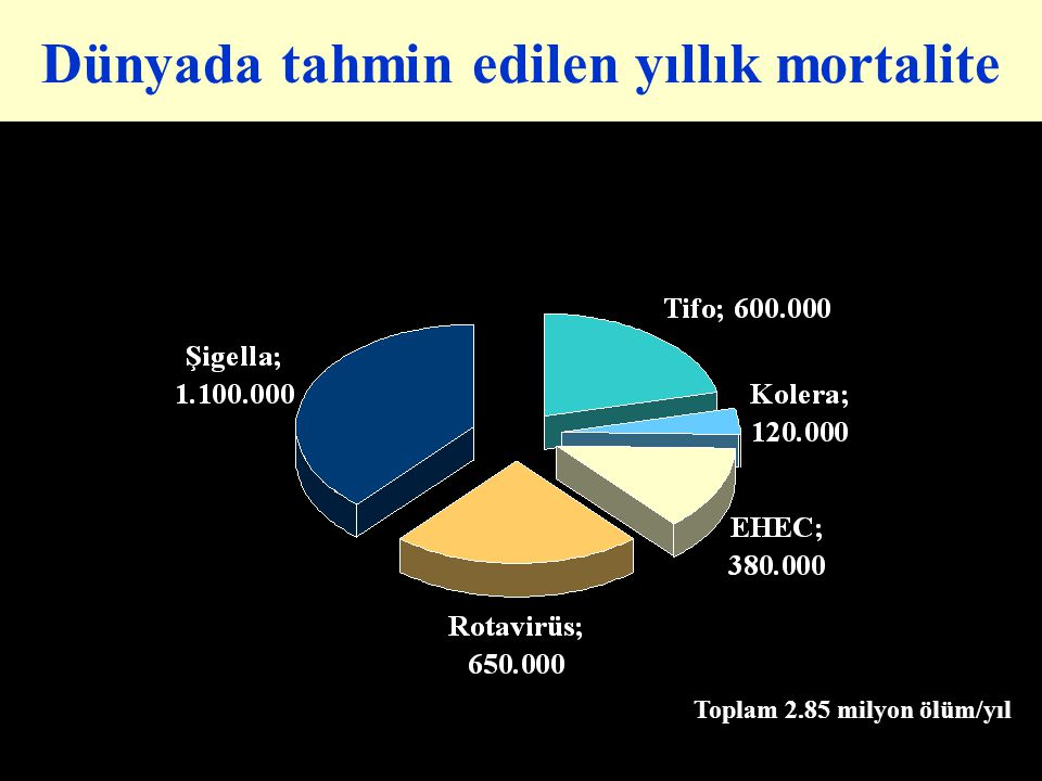 Dünyada tahmin edilen yıllık mortalite Toplam 2.85 milyon ölüm/yıl