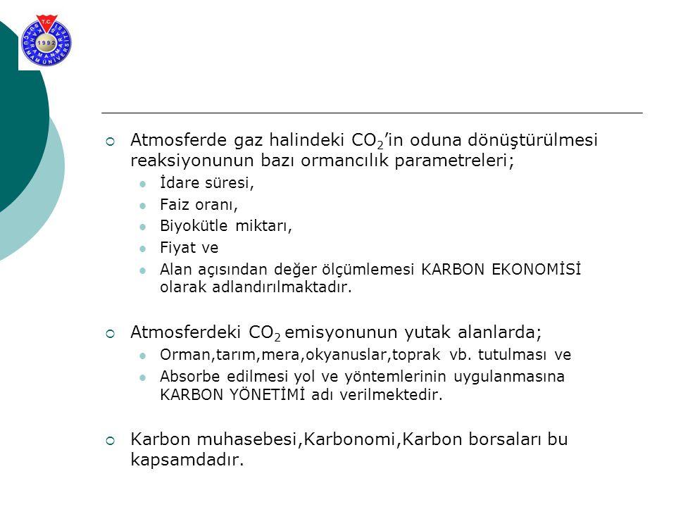  Atmosferde gaz halindeki CO 2 'in oduna dönüştürülmesi reaksiyonunun bazı ormancılık parametreleri; İdare süresi, Faiz oranı, Biyokütle miktarı, Fiy