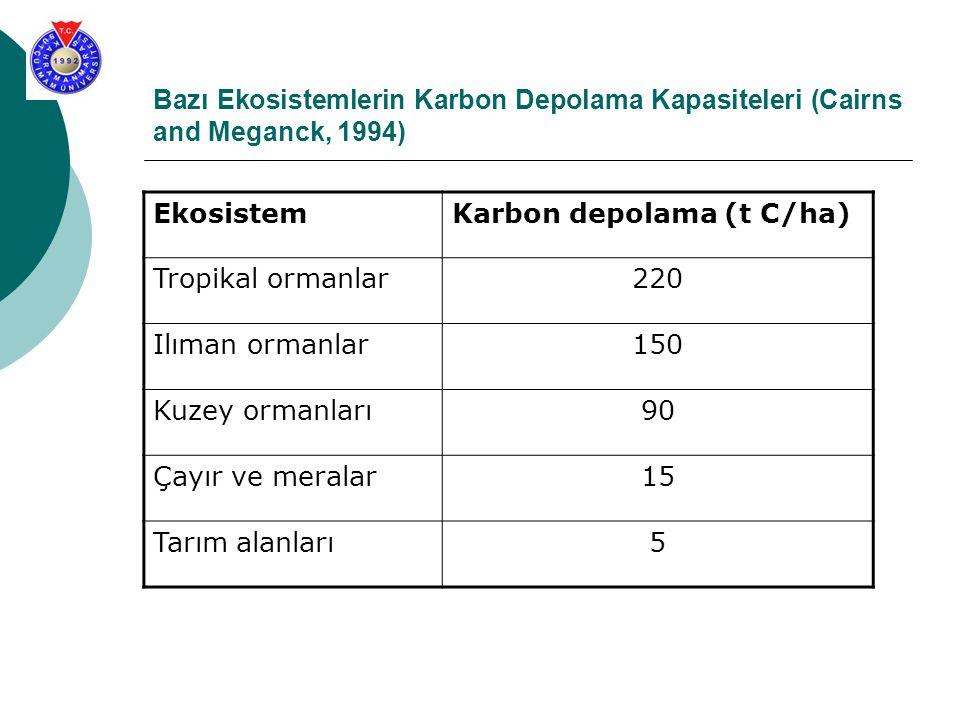 Bazı Ekosistemlerin Karbon Depolama Kapasiteleri (Cairns and Meganck, 1994) EkosistemKarbon depolama (t C/ha) Tropikal ormanlar220 Ilıman ormanlar150