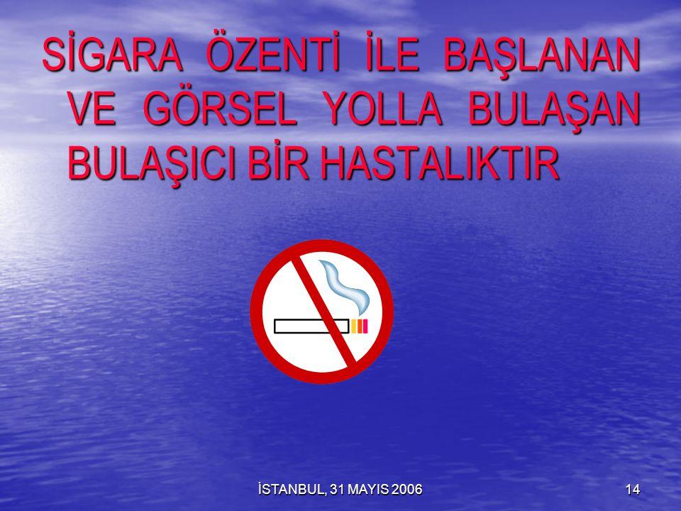 İSTANBUL, 31 MAYIS 200613 SİGARA AKTİF İÇİCİLİK PASİF İÇİCİLİK DUMANSIZ TÜTÜN KULLANIMI