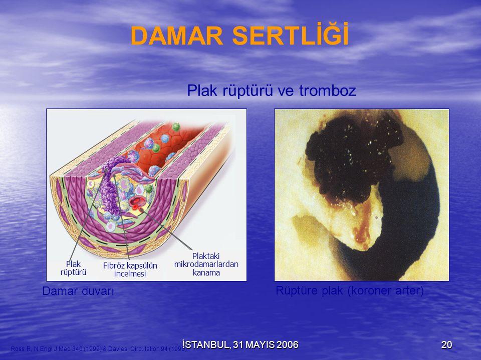 İSTANBUL, 31 MAYIS 200619 Normal arter kesiti Normal arter kesiti