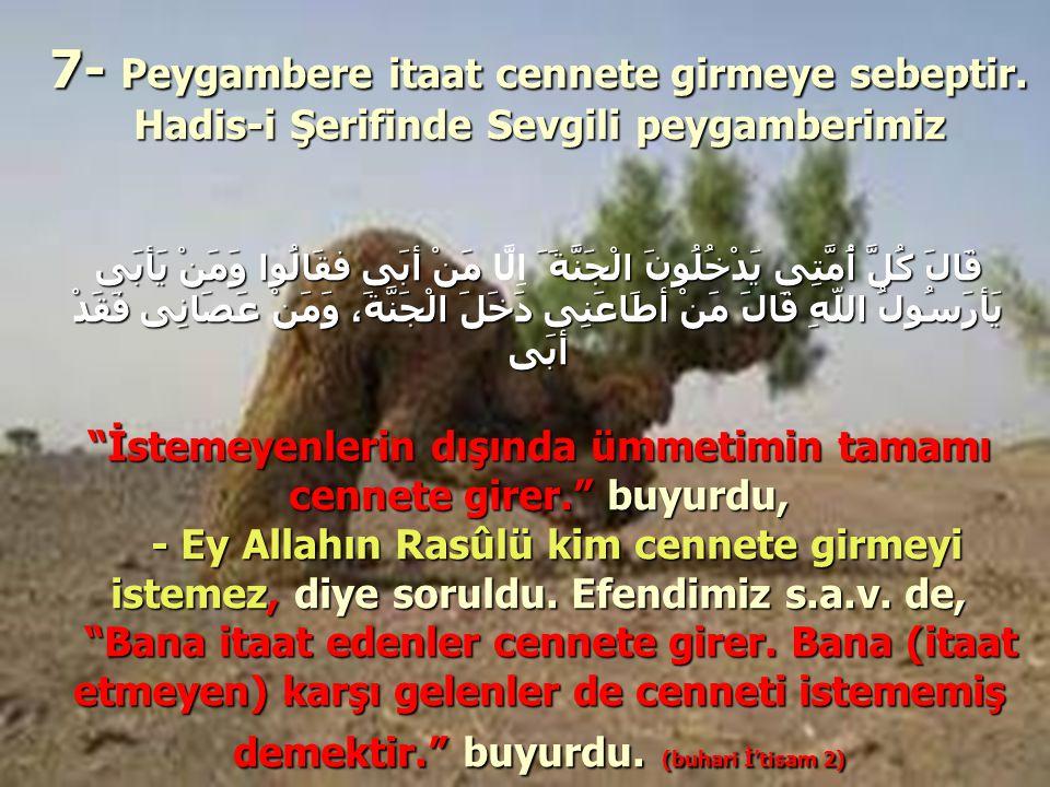 7- Peygambere itaat cennete girmeye sebeptir. Hadis-i Şerifinde Sevgili peygamberimiz قَالَ كُلَّ أُمَّتِى يَدْخُلُونَ الْجَنَّةَ َ مَنْ أبَى فقَالُوا