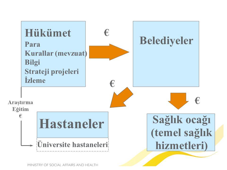 Hükümet Para Kurallar (mevzuat) Bilgi Strateji projeleri İzleme Belediyeler Hastaneler Sağlık ocağı (temel sağlık hizmetleri) Üniversite hastaneleri Araştırma Eğitim € € € €