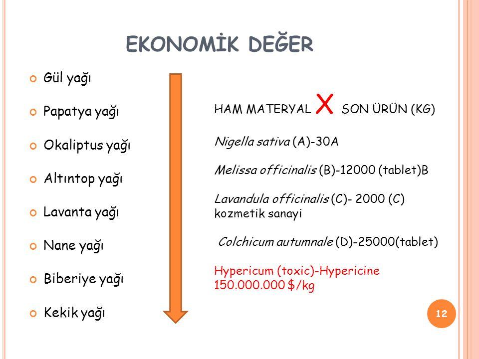 EKONOMİK DEĞER Gül yağı Papatya yağı Okaliptus yağı Altıntop yağı Lavanta yağı Nane yağı Biberiye yağı Kekik yağı 12 HAM MATERYAL X SON ÜRÜN (KG) Nigella sativa (A)-30A Melissa officinalis (B)-12000 (tablet)B Lavandula officinalis (C)- 2000 (C) kozmetik sanayi Colchicum autumnale (D)-25000(tablet) Hypericum (toxic)-Hypericine 150.000.000 $/kg