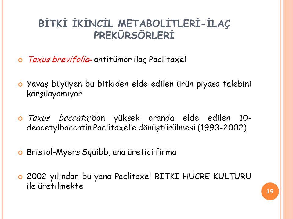 BİTKİ İKİNCİL METABOLİTLERİ-İLAÇ PREKÜRSÖRLERİ Taxus brevifolia- antitümör ilaç Paclitaxel Yavaş büyüyen bu bitkiden elde edilen ürün piyasa talebini karşılayamıyor Taxus baccata;'dan yüksek oranda elde edilen 10- deacetylbaccatin Paclitaxel'e dönüştürülmesi (1993-2002) Bristol-Myers Squibb, ana üretici firma 2002 yılından bu yana Paclitaxel BİTKİ HÜCRE KÜLTÜRÜ ile üretilmekte 19