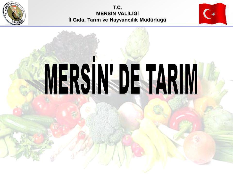 T.C. MERSİN VALİLİĞİ İl Gıda, Tarım ve Hayvancılık Müdürlüğü