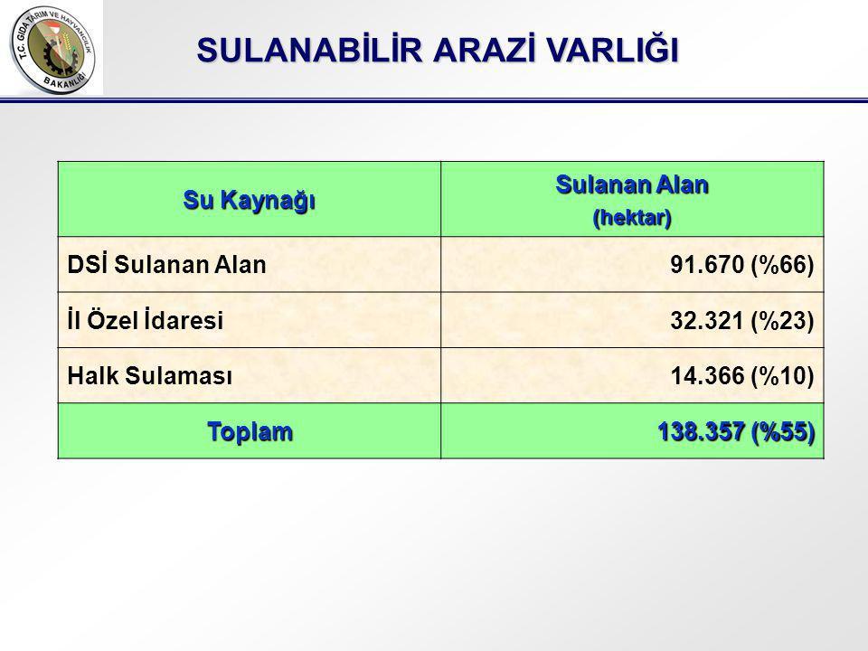 SULANABİLİR ARAZİ VARLIĞI Su Kaynağı Sulanan Alan (hektar) DSİ Sulanan Alan91.670 (%66) İl Özel İdaresi32.321 (%23) Halk Sulaması14.366 (%10) Toplam 138.357 (%55)