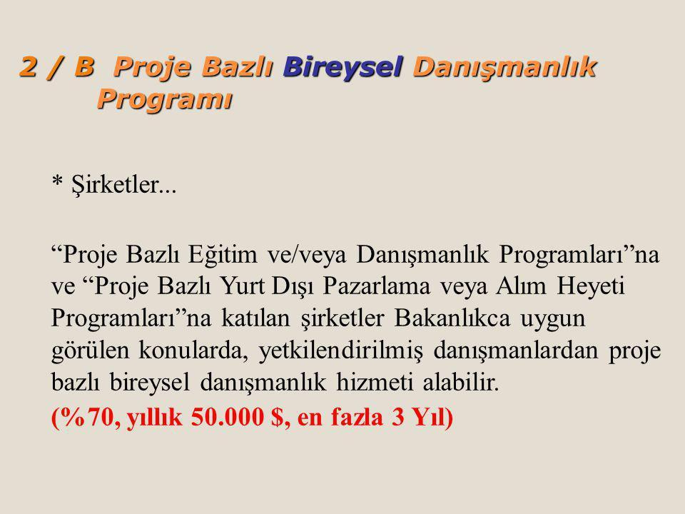 2 / B Proje Bazlı Bireysel Danışmanlık Programı * Şirketler...