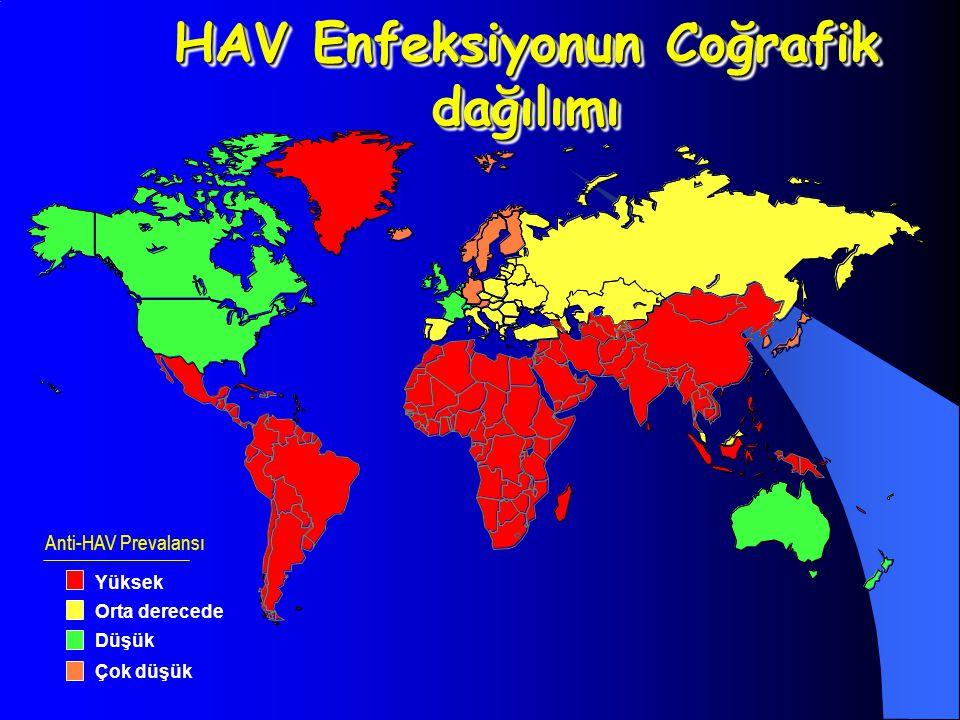 HAV Enfeksiyonun Coğrafik dağılımı Anti-HAV Prevalansı Yüksek Orta derecede Düşük Çok düşük