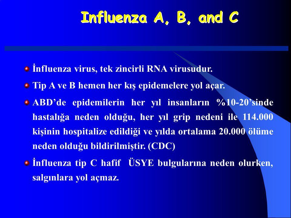 Influenza A, B, and C İnfluenza virus, tek zincirli RNA virusudur. Tip A ve B hemen her kış epidemelere yol açar. ABD'de epidemilerin her yıl insanlar