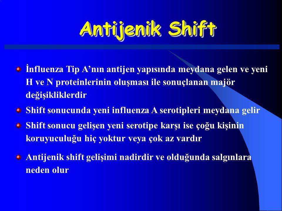 Antijenik Shift İnfluenza Tip A'nın antijen yapısında meydana gelen ve yeni H ve N proteinlerinin oluşması ile sonuçlanan majör değişikliklerdir Shift