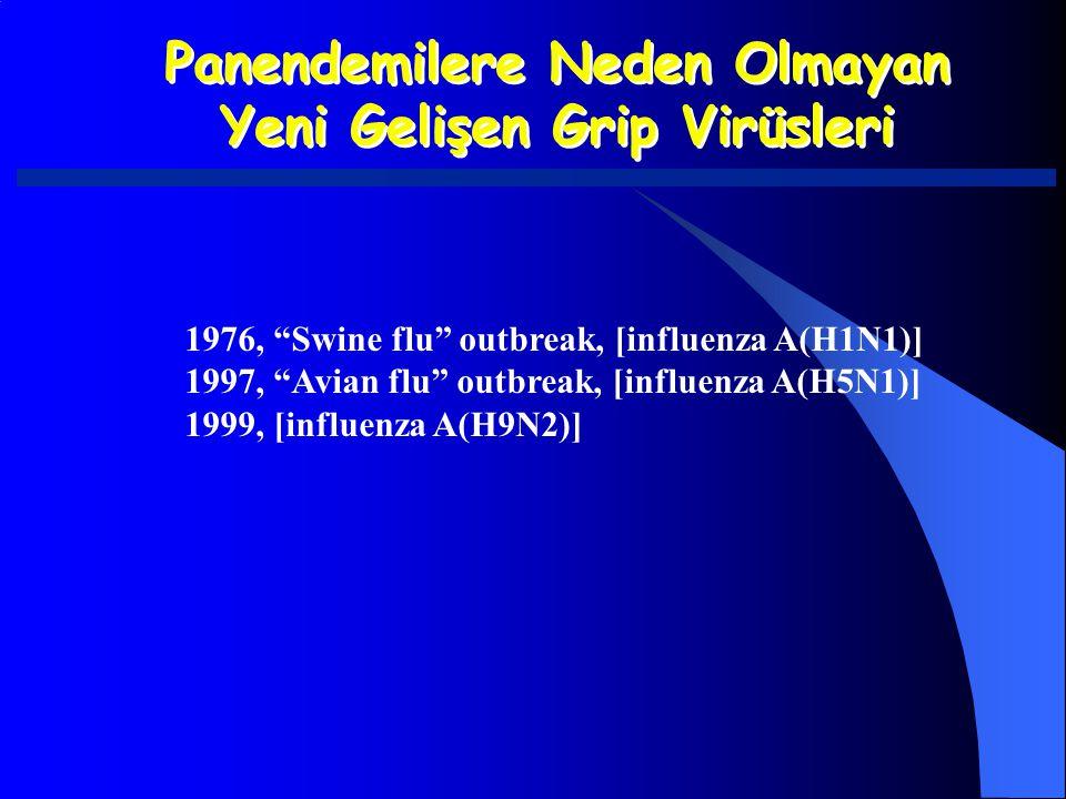 """Panendemilere Neden Olmayan Yeni Gelişen Grip Virüsleri Panendemilere Neden Olmayan Yeni Gelişen Grip Virüsleri 1976, """"Swine flu"""" outbreak, [influenza"""