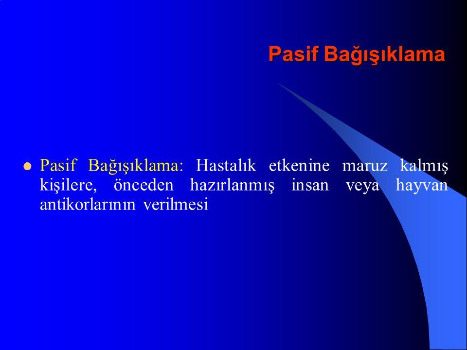 Hepatit A - Aşıları HAVRİX (SmithKline Beecham) VAQTA (Merck) AVAXİM (Pasteur-Meriex-Connaught) EPAXAL (Swiss Serum Institute)