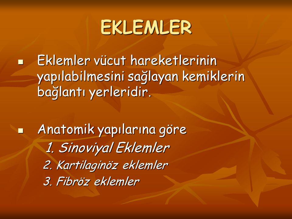 EKLEMLER Eklemler vücut hareketlerinin yapılabilmesini sağlayan kemiklerin bağlantı yerleridir. Eklemler vücut hareketlerinin yapılabilmesini sağlayan