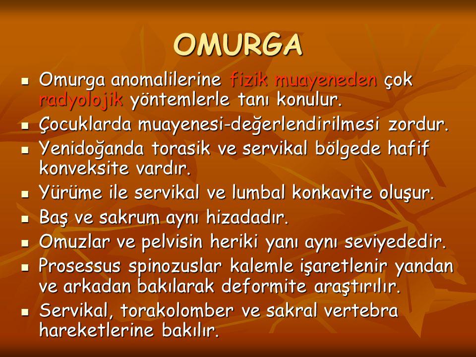 OMURGA Omurga anomalilerine fizik muayeneden çok radyolojik yöntemlerle tanı konulur. Omurga anomalilerine fizik muayeneden çok radyolojik yöntemlerle