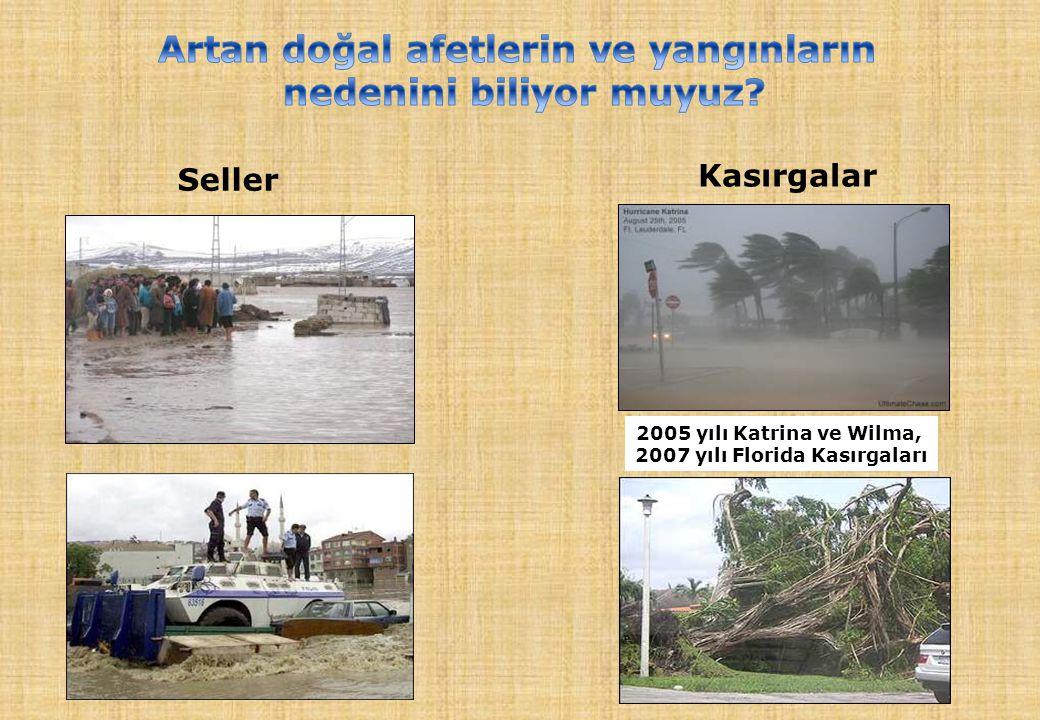 Seller Kasırgalar 2005 yılı Katrina ve Wilma, 2007 yılı Florida Kasırgaları