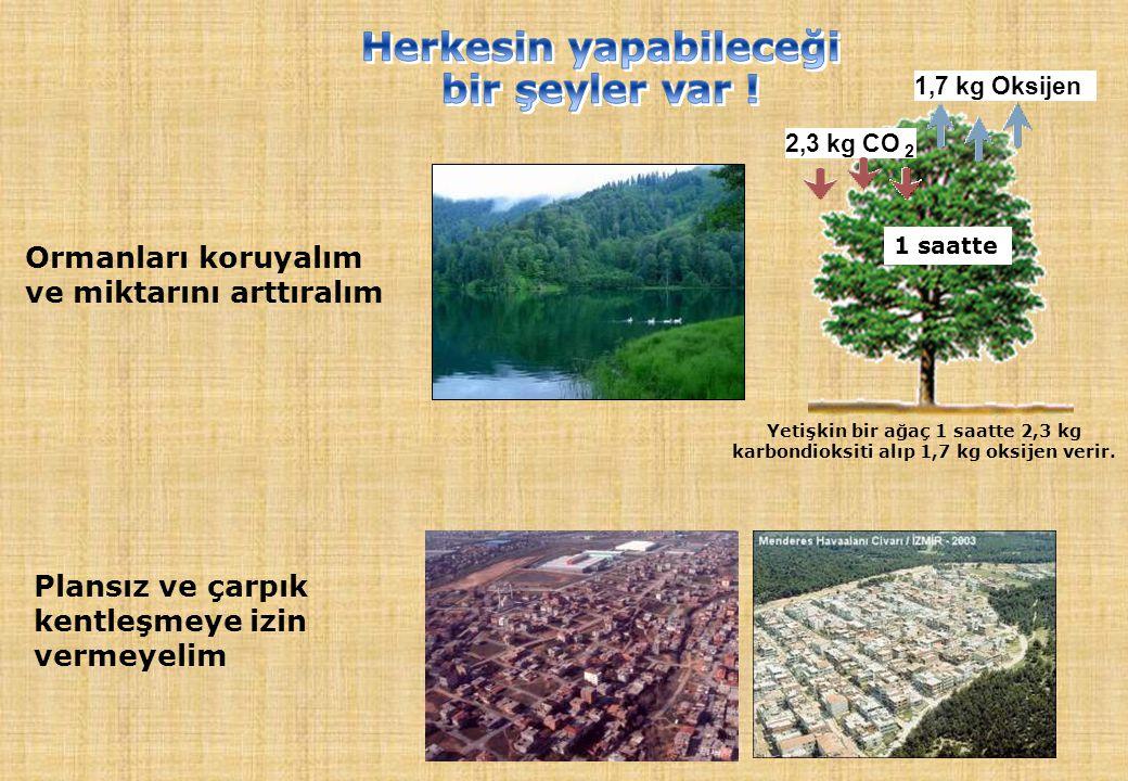 Ormanları koruyalım ve miktarını arttıralım Plansız ve çarpık kentleşmeye izin vermeyelim 1,7 kg Oksijen 2,3 kg CO 2 1 saatte Yetişkin bir ağaç 1 saat