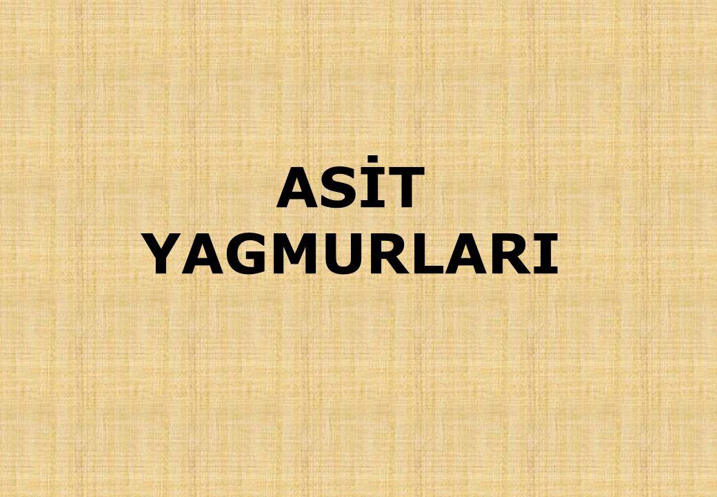 ASİT YAGMURLARI