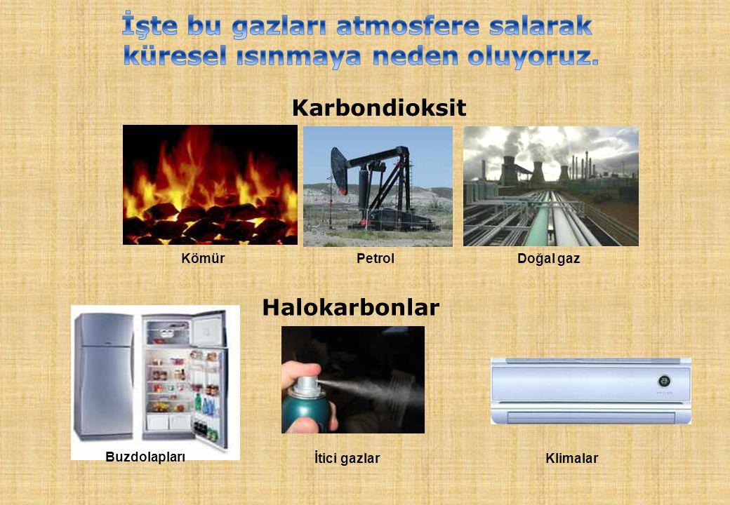 Kömür PetrolDoğal gaz Karbondioksit Halokarbonlar Buzdolapları İtici gazlarKlimalar