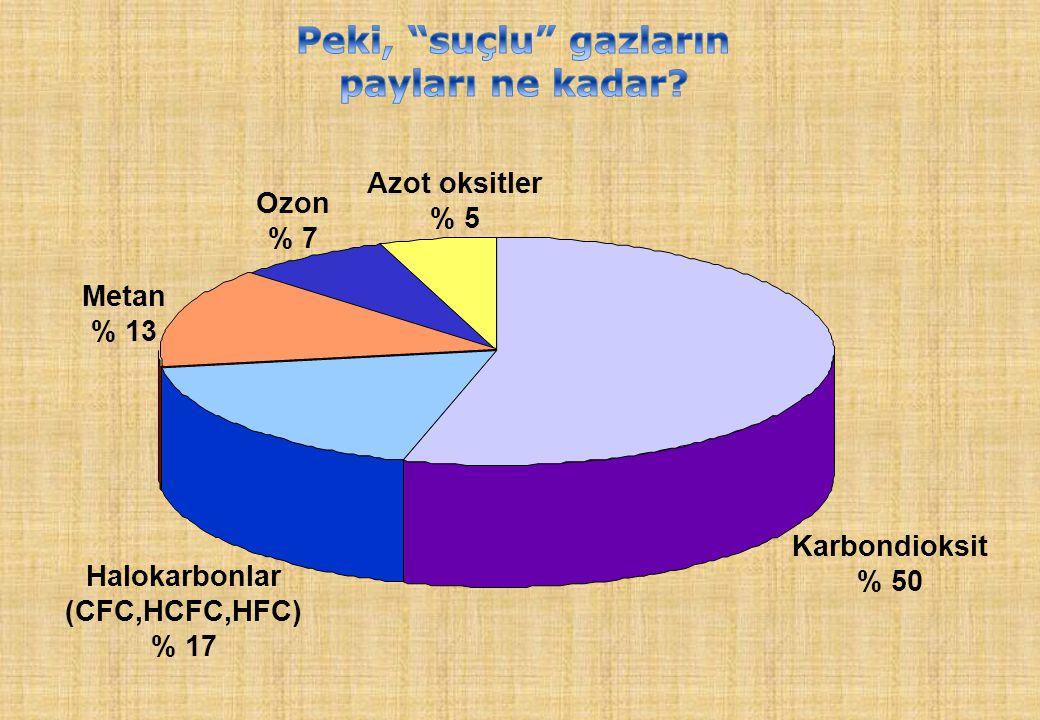 Karbondioksit % 50 Azot oksitler % 5 Ozon % 7 Metan % 13 Halokarbonlar (CFC,HCFC,HFC) % 17