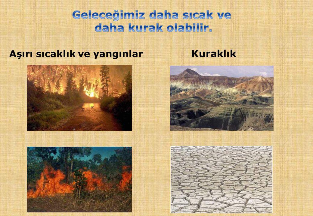 Kuraklık Aşırı sıcaklık ve yangınlar