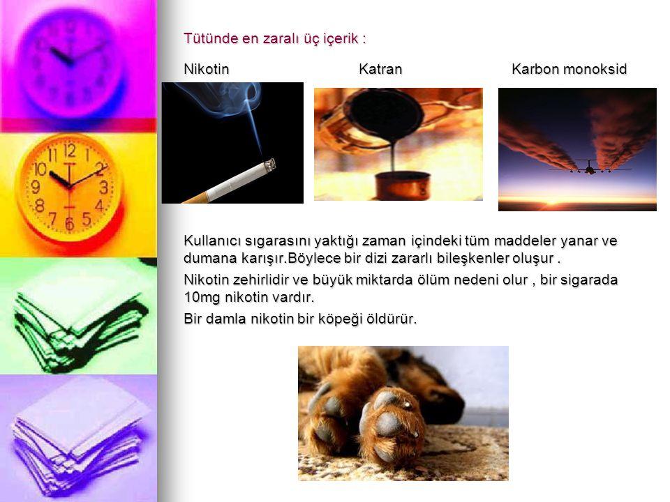 Nikotinizm Sigara kullanımı aslında kronik zehirlenmenin diğer adıdır.