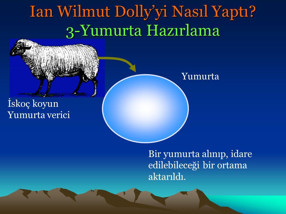 Ian Wilmut Dolly'yi Nasıl Yaptı? 3-Yumurta Hazırlama İskoç koyun Yumurta verici Bir yumurta alınıp, idare edilebileceği bir ortama aktarıldı. Yumurta