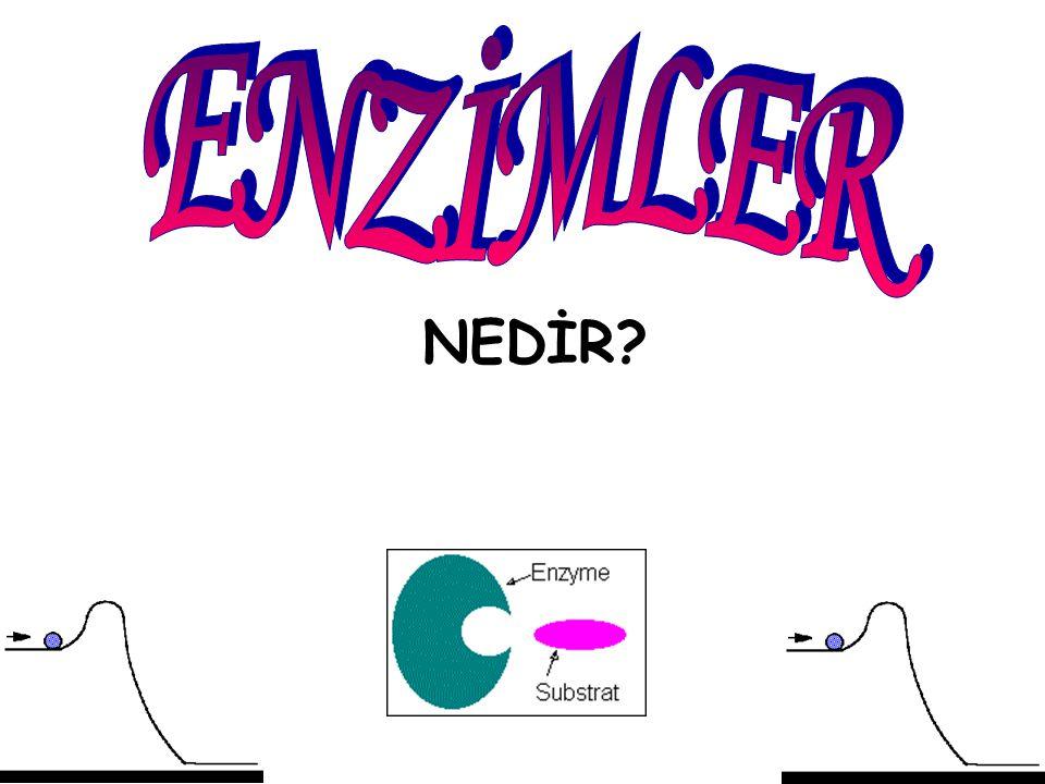 11.Enzimler hücrede genellikle takım halinde çalışırlar.