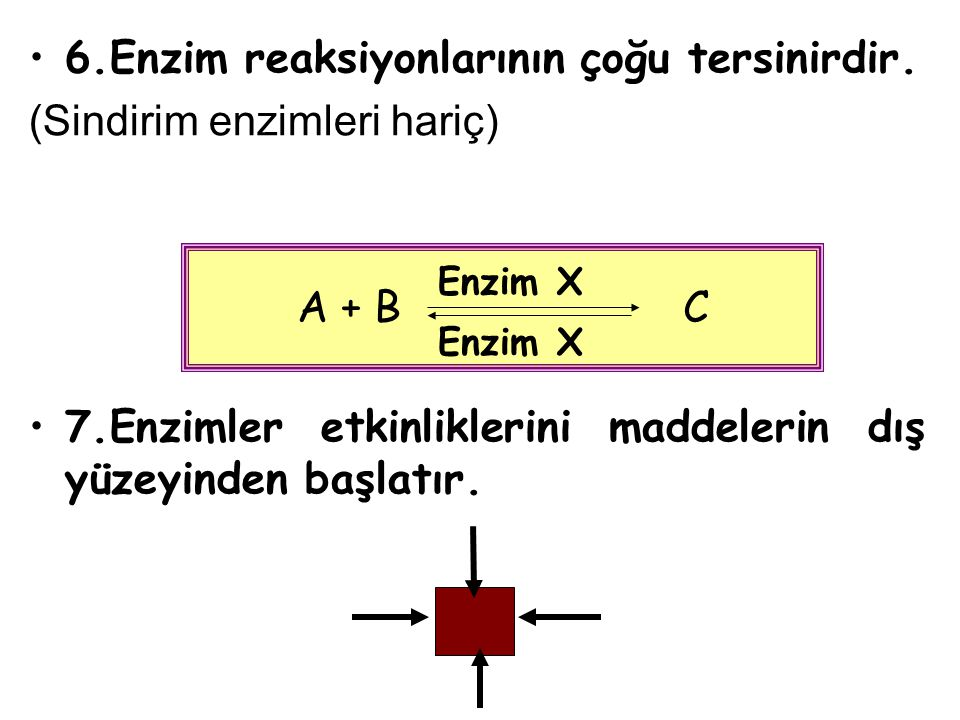 6.Enzim reaksiyonlarının çoğu tersinirdir. (Sindirim enzimleri hariç) 7.Enzimler etkinliklerini maddelerin dış yüzeyinden başlatır. A + B C Enzim X
