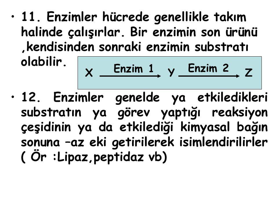 11. Enzimler hücrede genellikle takım halinde çalışırlar. Bir enzimin son ürünü,kendisinden sonraki enzimin substratı olabilir. 12. Enzimler genelde y