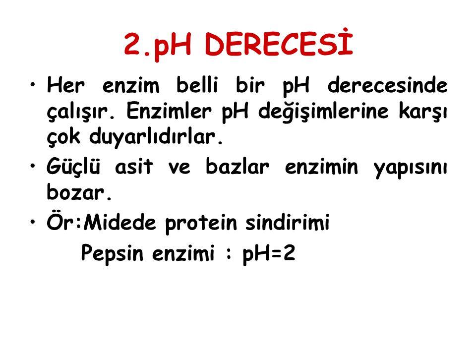 2.pH DERECESİ Her enzim belli bir pH derecesinde çalışır. Enzimler pH değişimlerine karşı çok duyarlıdırlar. Güçlü asit ve bazlar enzimin yapısını boz