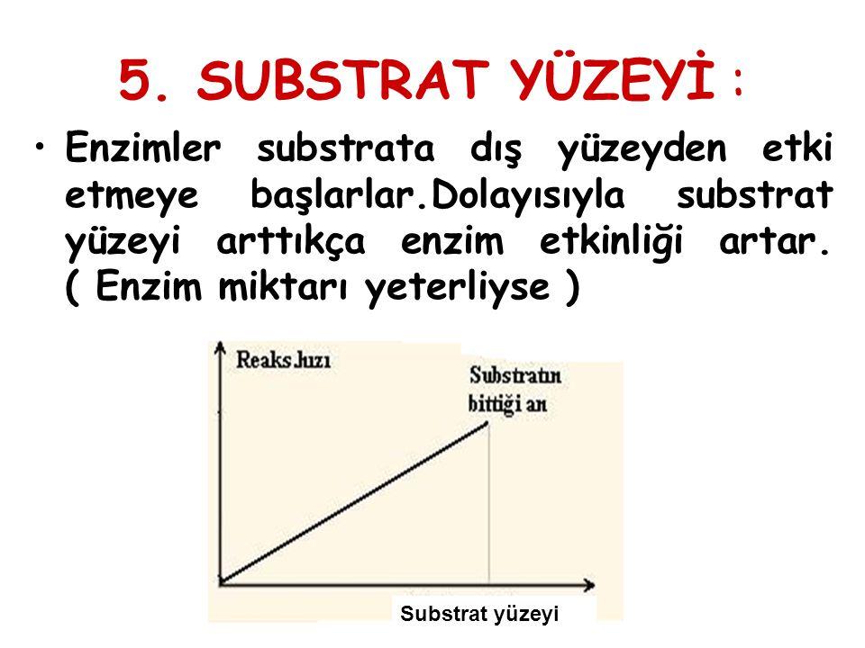 5. SUBSTRAT YÜZEYİ : Enzimler substrata dış yüzeyden etki etmeye başlarlar.Dolayısıyla substrat yüzeyi arttıkça enzim etkinliği artar. ( Enzim miktarı