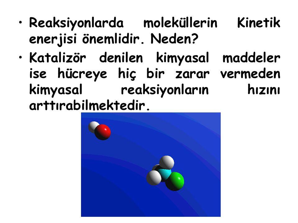 Reaksiyonlarda moleküllerin Kinetik enerjisi önemlidir. Neden? Katalizör denilen kimyasal maddeler ise hücreye hiç bir zarar vermeden kimyasal reaksiy