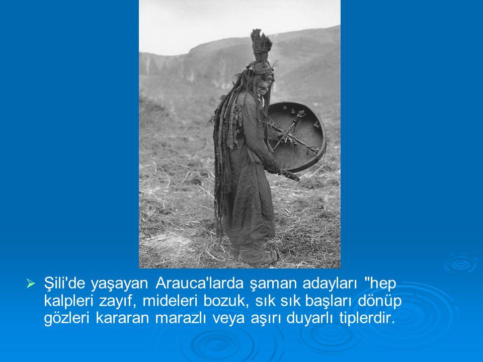   Şili'de yaşayan Arauca'larda şaman adayları