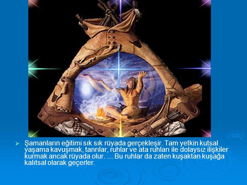  Şamanların eğitimi sık sık rüyada gerçekleşir. Tam yetkin kutsal yaşama kavuşmak, tanrılar, ruhlar ve ata ruhları ile dolaysız ilişkiler kurmak an