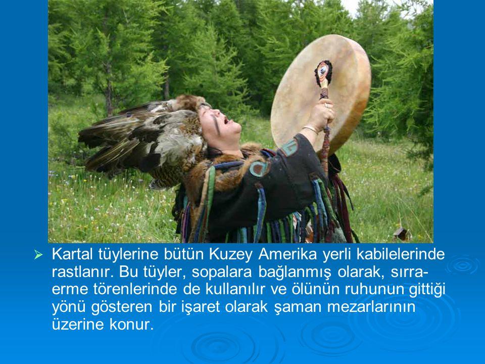   Kartal tüylerine bütün Kuzey Amerika yerli kabilelerinde rastlanır. Bu tüyler, sopalara bağlanmış olarak, sırra- erme törenlerinde de kullanılır v