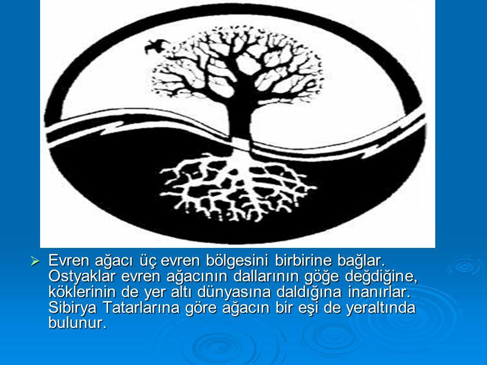  Evren ağacı üç evren bölgesini birbirine bağlar. Ostyaklar evren ağacının dallarının göğe değdiğine, köklerinin de yer altı dünyasına daldığına inan