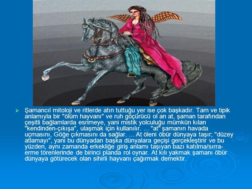   Şamancıl mitoloji ve ritlerde atın tuttuğu yer ise çok başkadır. Tam ve tipik anlamıyla bir
